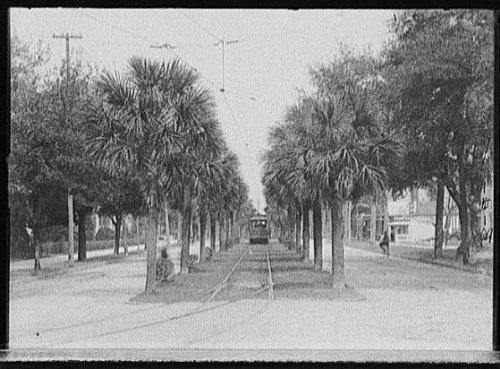 Photo: Street car,electric railroads,Jacksonville,Florida,FL,Detroit Publishing Co,1890