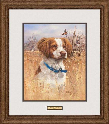 Wild Wings Top Dog - Brittany Spaniel Framed Print by Jim Killen