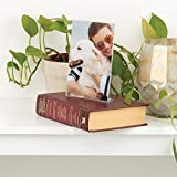 Snap Clear Acrylic Self Standing Photo, Set of 12