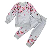 GQMART 2-6Y Kids Girls Lovely Outfit Clothes T-Shirt Tops+Long Pants Trousers 3 Years,Grey