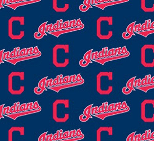 Country Snuggles Indians Lampshade Cover, Matching Night Light, Matching Switchplates (Single (Cleveland Indians Night Light)