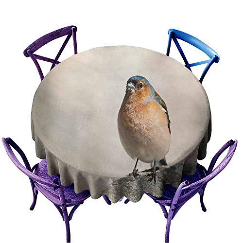 Acelik Round Outdoor Tablecloth,Bird Chaffinch Sings The Song Standing in The Spring Forest in Sunny Day,for Events Party Restaurant Dining Table Cover,50 INCH