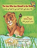 The Lion Who Saw Himself in the Water: English-Pashto Edition (Hoopoe Teaching-Stories)