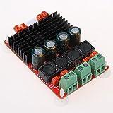 EVERYDI TPA3116 dual channel 50W2 digital power amplifier board 100W PBTL single channel high power amplifier module