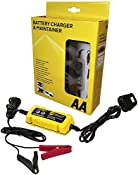 AA Battery Charger & Maintainer, For 6V & 12V Lead Acid and Gel Batteries - Black/Yellow: Amazon.co.uk: Car & Motorbike