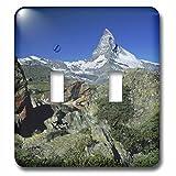 3dRose lsp_84622_2 Mountains, Matterhorn, Zermatt, Alps, Switzerland Na02 Rnu0803 Rolf Nussbaumer Double Toggle Switch