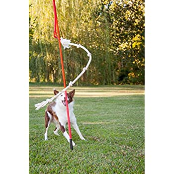 Pet Supplies : Tether Tug Interactive Dog Toy, Outdoor, X