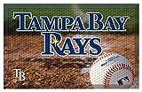 Tampa Bay Devil Rays Team Door Mat Ball - Tampa Bay Devil Rays Home Decor
