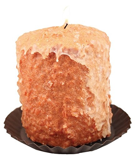 Warm Glow Candle Company Carrot Cake Hearth Candle with Tin