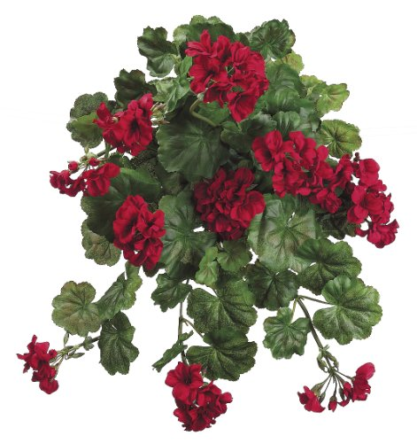 Artificial 22-inch Red Geranium Trailing Bush (Set of 6) by House of Silk Flowers