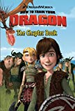 How to Train Your Dragon: The Chapter Book (DreamWorks How to Train Your Dragon (Harperfestival))