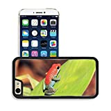 MSD Premium Apple iPhone 6 iPhone 6S Aluminum Backplate Bumper Snap Case Image ID 27331604 Strawberry Poison dart Frog aka Blue Jeans Dendrobates Pumilio On a Leaf Drake Bay Osa Peninsula Co