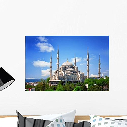 - Wallmonkeys Sultan Ahmed Mosque Blue Wall Mural Peel and Stick Graphic (24 in W x 16 in H) WM360814