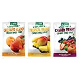 Sensible Foods Fruit Mix Variety - Tropical Blend, Orchard Blend, and Cherry Berry - Pack of 3 - Kosher - Gluten Fee - Non GMO Verified