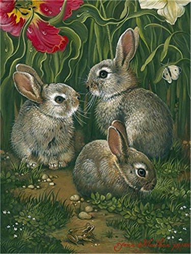 Diy Oil Paint by Number Kit for Adults Beginner 16x20 inch - Three Small Rabbits, Drawing with Brushes Christmas Decor Decorations Gifts (Frame)