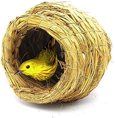 Productos para Mascotas Jaulas para Pájaros Hecho a Mano Paja ...