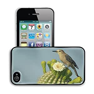 Birds Animals Bee Eaters Cactus Flower Apple iPhone 4 / 4S Snap Cover Premium Aluminium Design Back Plate Case Customized Made to Order Support Ready 4 7/16 inch (112mm) x 2 3/8 inch (60mm) x 7/16 inch (11mm) MSD iPhone_4 4S Professional Metal Cases Touch