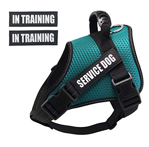 (Dihapet No Pull Dog Harness, Adjustable Service Dog Vest, Reflective Easy for Walking Training, Green/M)