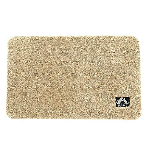 certainPL Super Absorbent Doormat, Indoor Outdoor Entrance Rug, Non-Slip Bath Mat, Machine Washable Area Rugs, 16x24 inches -