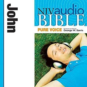 NIV Audio Bible, Pure Voice: John Audiobook