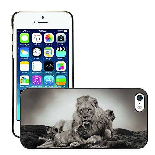 Stampato Modelli Hard plastica Custodie indietro Case Cover pelle protettiva Per // M00421774 Lion Cub animal bébé animal // Apple iPhone 5 5S 5G