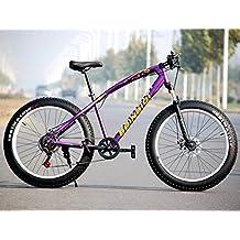 High Carbon Steel Fat Bike, 4.0 Width Wheel,Aluminum Alloy Rim,Front & Rear Disc Brakes