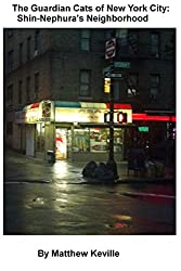 The Guardian Cats of New York City: Shin-Nephura's Neighborhood