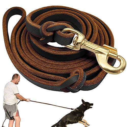 Didog Genuine Leather Dog Leashes, 8 Foot Professional Training Heavy Duty Dog Leashes, Fit Medium Large Dogs Walking Training Competition, Brown