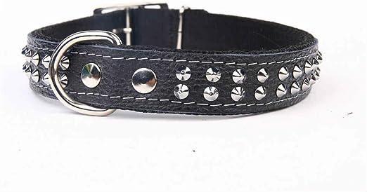 collier pour chien cuir ou nylon
