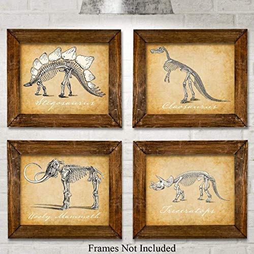 rt Prints - Set of Four Photos (8x10) Unframed - Great for Boy's Room Decor ()