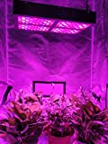 Farmedicine WiFi 2500W LED Smart 200XL Chip Grow