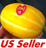 buy 35 PCS Neungju Gold Value Melon Seeds E57, Chilsan Korean Sweet Melon now, new 2018-2017 bestseller, review and Photo, best price $8.00