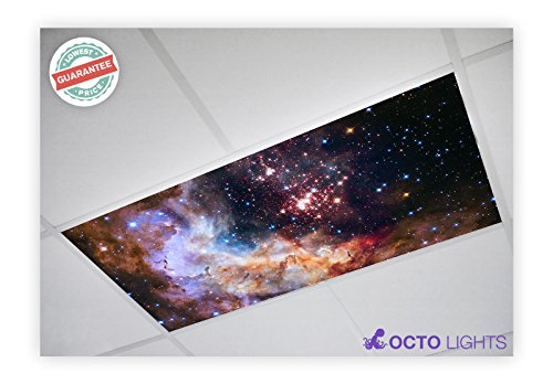 Decorative Fluorescent Light - Astronomy 018 2x4 Flexible Fluorescent Light Cover