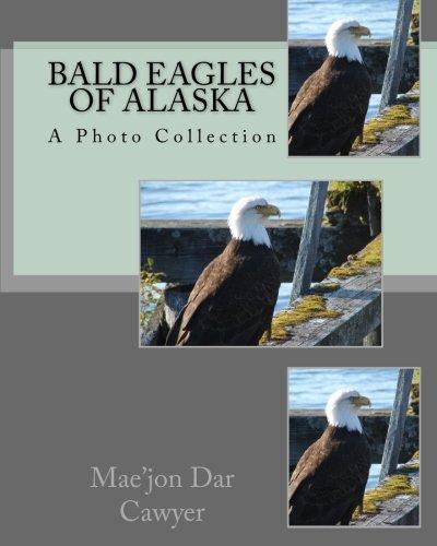 (Bald Eagles of Alaska)