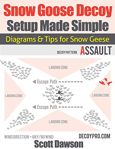 Geese Goose Decoy (Snow Goose Decoy Setup Made Simple: Diagrams & Tips for Snow Geese)