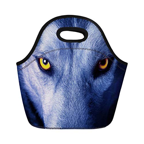 Threats Gray Wolf - Semtomn Neoprene Lunch Tote Bag Yellow Head Beautiful Eyes of Wild Wolf Gray Animal Reusable Cooler Bags Insulated Thermal Picnic Handbag for Travel,School,Outdoors,Work