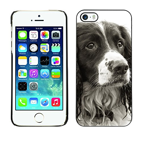 Premio Sottile Slim Cassa Custodia Case Cover Shell // F00009876 chien // Apple iPhone 5 5S 5G