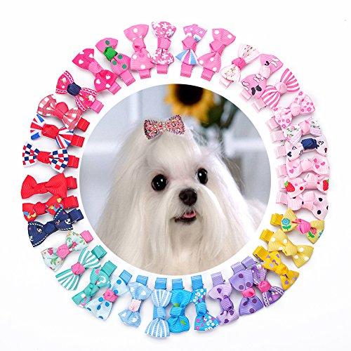 [PET N PET Dog Hair Clips Hair Bows 36 PCS Plus 2 PCS Diamond Bling Bling Clips Pet Grooming Products Cat Puppy Hair Accessories Random Color] (Pet Clip)