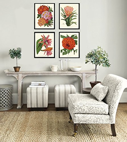 Botanical Tropical Flowers Art Print Set of 4 Beautiful Antique Pink Red Orange Cactus Azalea Ariza Rhododendron Large Garden Nature Home Room Decor Wall Art Unframed