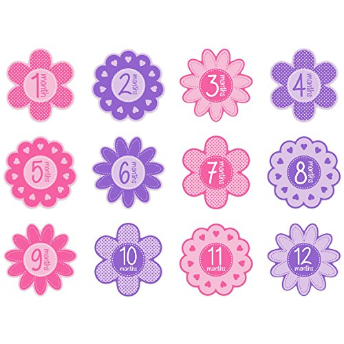 Tiny Ideas First Year Monthly Milestone Flowers Photo Sharing Baby Belly Stickers 112 Months Pink
