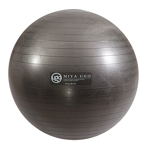 1000bls Anti-Burst Exercise Stability Ball Yoga Ball with Foot Pump Grey 75cm