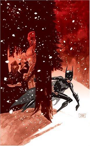Batgirl: Destruction's Daughter by Andersen Gabrych (2006-09-20) -