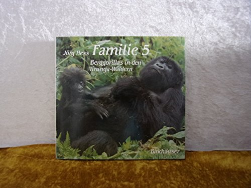 Familie 5 Berggorillas in den Virunga-Wäldern