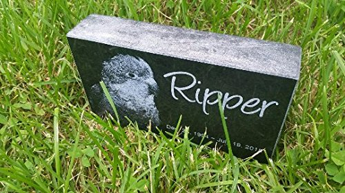 Personalised Pet Stone Memorial Marker Granite Marker Dog Cat Horse Bird Human 4'' X 7'' X 2'' Custom Design Personalized Pomeranian Yorkie Yorkshire Terrier