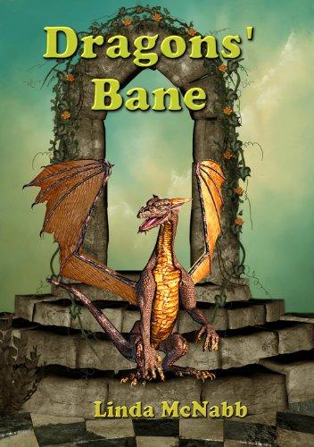 The Dragons Apprentice (Dragon Valley Book 1)