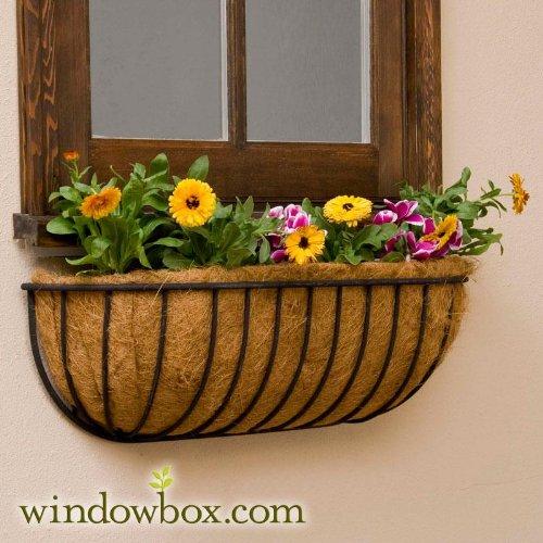 36in. XL Carolina Window Basket w/ Coco Liner (Xl Coco Liner)