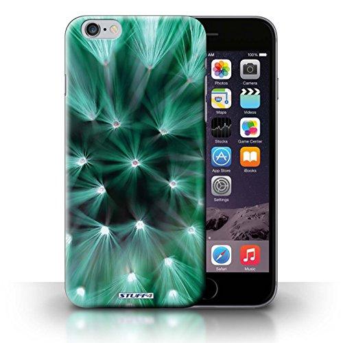 Hülle Case für iPhone 6+/Plus 5.5 / Türkis Entwurf / Multi Farbe Licht Blume Collection