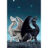 5D Diamond Painting Full Drill, Dragon Diamond Painting Kits for Adults Kids Crystal Rhinestone DIY Arts Craft for Home Wall Decor (White Black Dragon, 11.8x15.7inch)