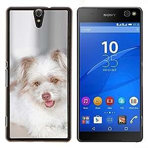 Cachorro West Highland White Terrier- Metal de aluminio y de plástico duro Caja del teléfono - Negro - Xperia C5 E5553 E5506 / C5 Ultra
