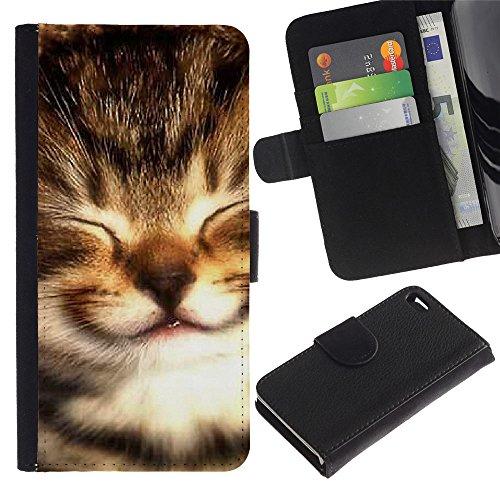 Be Good Phone Accessory // Caso del tirón Billetera de Cuero Titular de la tarjeta Carcasa Funda de Protección para Apple Iphone 4 / 4S // Maine Coon Kitten Small Baby Selkirk